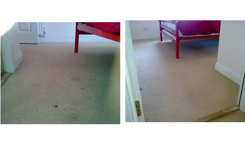 carpet cleaner Bankfoot