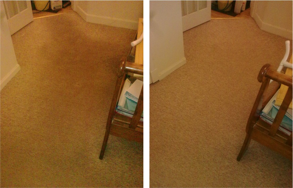 carpet cleaner Pitlochry